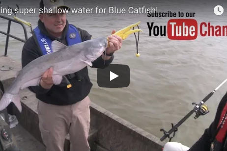 Fishing Super Shallow Water For Blue Catfish!