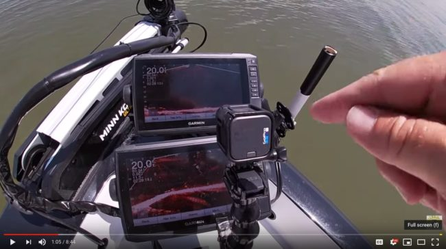 Team Catfish - Livescoping catfish
