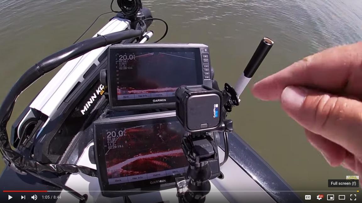 Team Catfish - Livescoping catfish